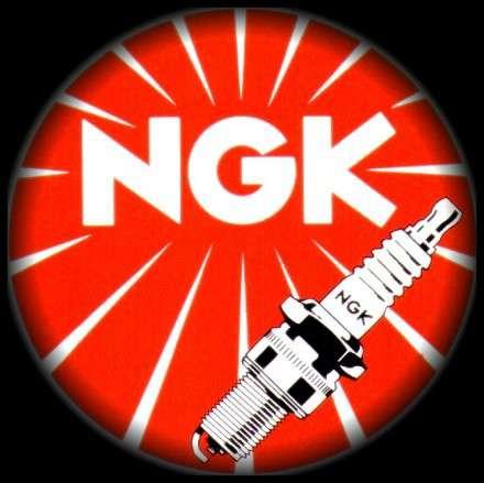Zapalovací svíčka NGK CR9EK 4548